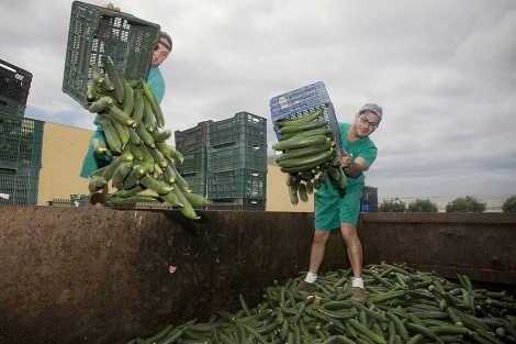 Cómo afrontar una crisis de reputación en el sector agroalimentario 1