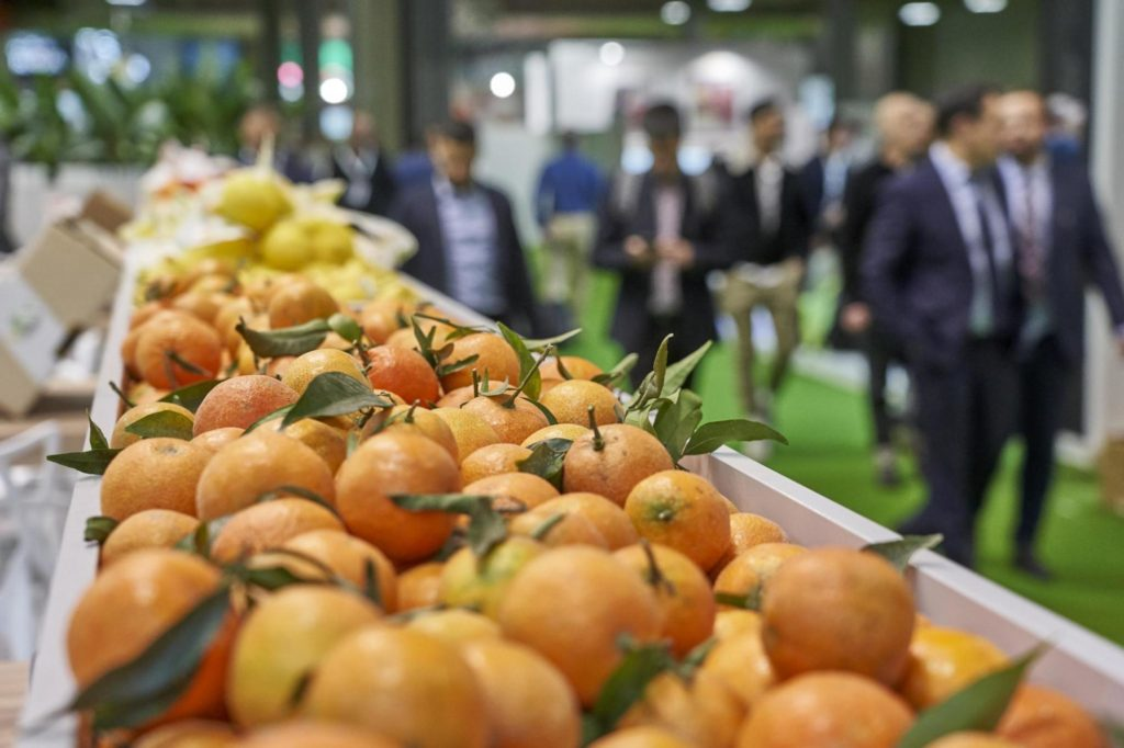 El éxito de Fruit Attraction 2019 en datos 1