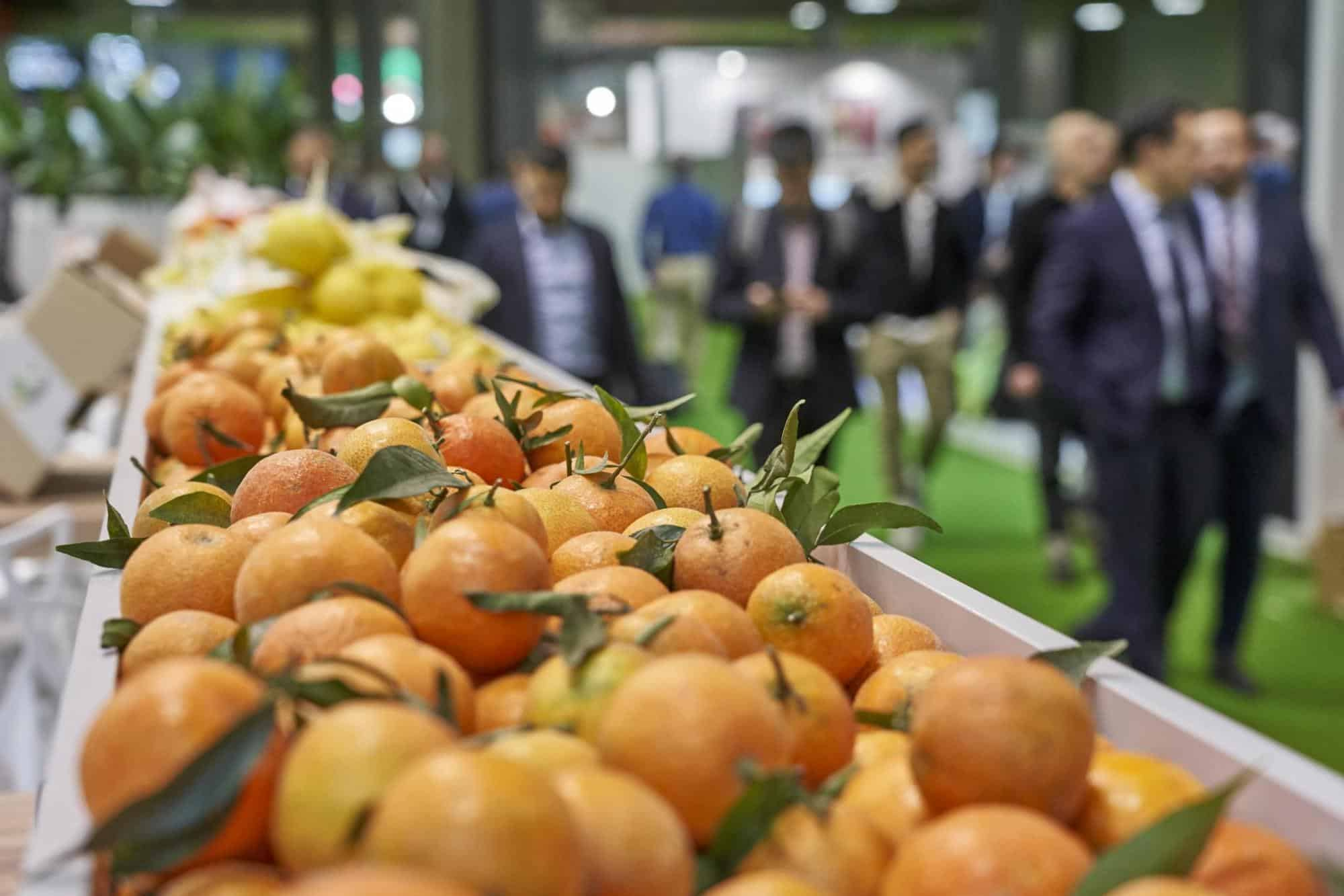 El éxito de Fruit Attraction 2019 en datos