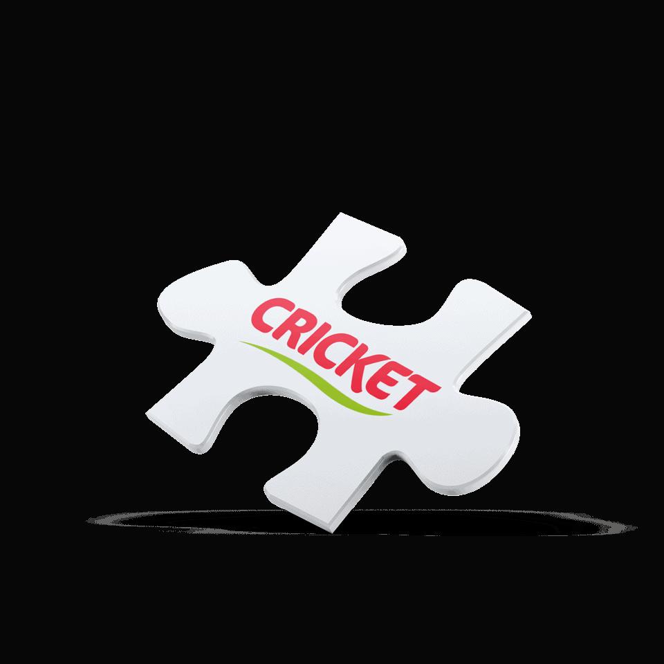 Cricket | Posicionamiento de marca con marketing agro 5