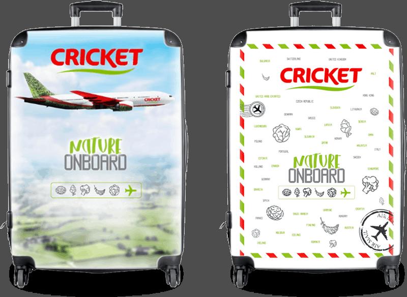 Cricket | Posicionamiento de marca con marketing agro 18