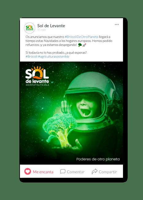 Comunicación, web y estrategia | Sol de Levante 9